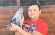 Raducu Moldovan un tânăr columbofil de doar 12 ani !